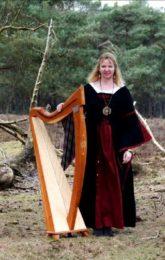 ''A Celtic Harp Dream''